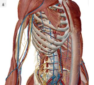 肋間 神経痛 診断
